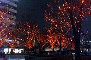 東京タワーが隙間から、、。